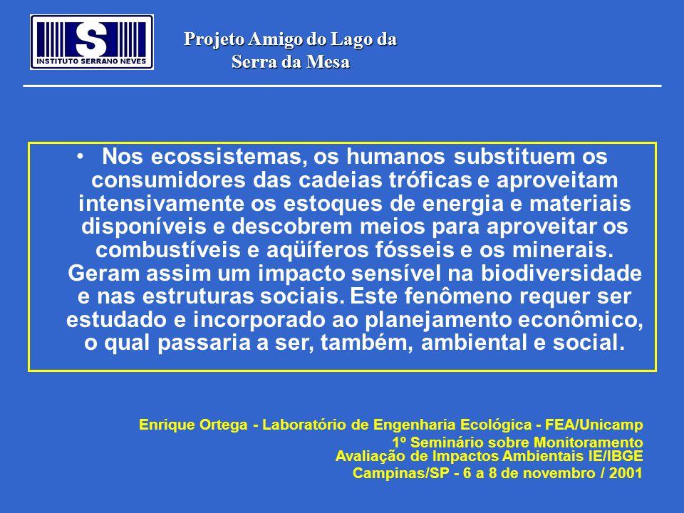 Projeto Amigo do Lago da Serra da Mesa •Pode-se comparar a alternativa de construção de uma usina hidroelétrica contra a preservação do ecossistema existente.