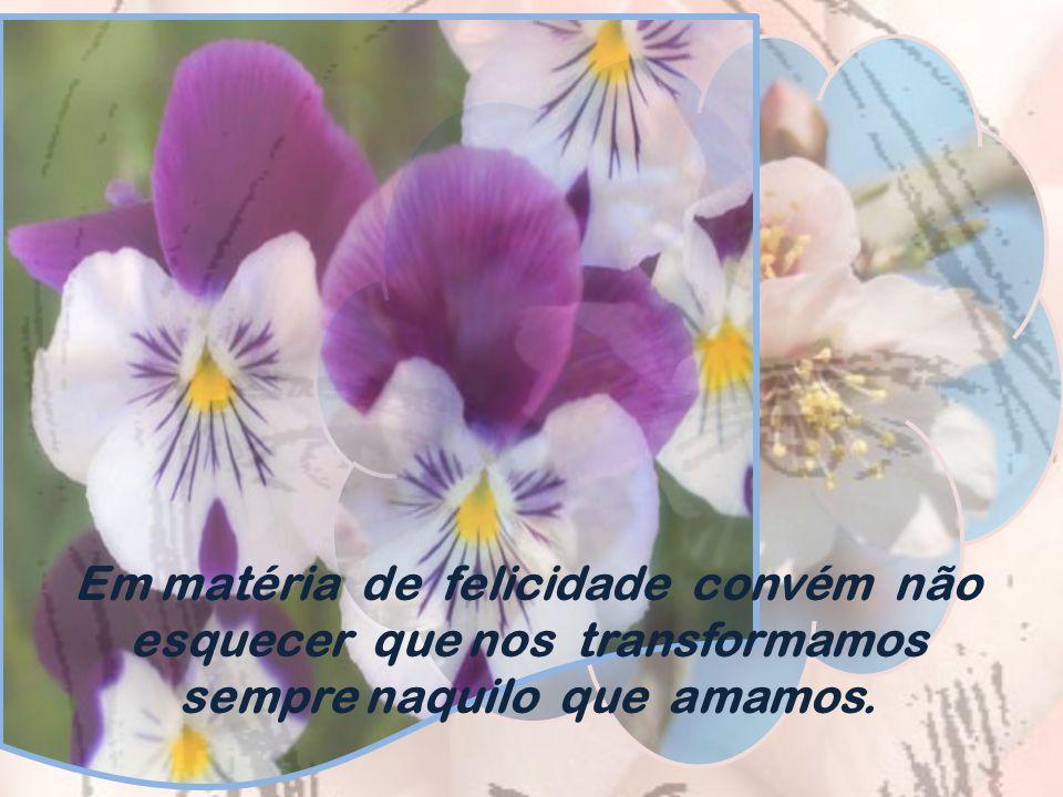 Quando o céu estiver em cinza, a derramar- se em chuva, medite na colheita farta que chegará do campo e na beleza das flores que surgirão no jardim