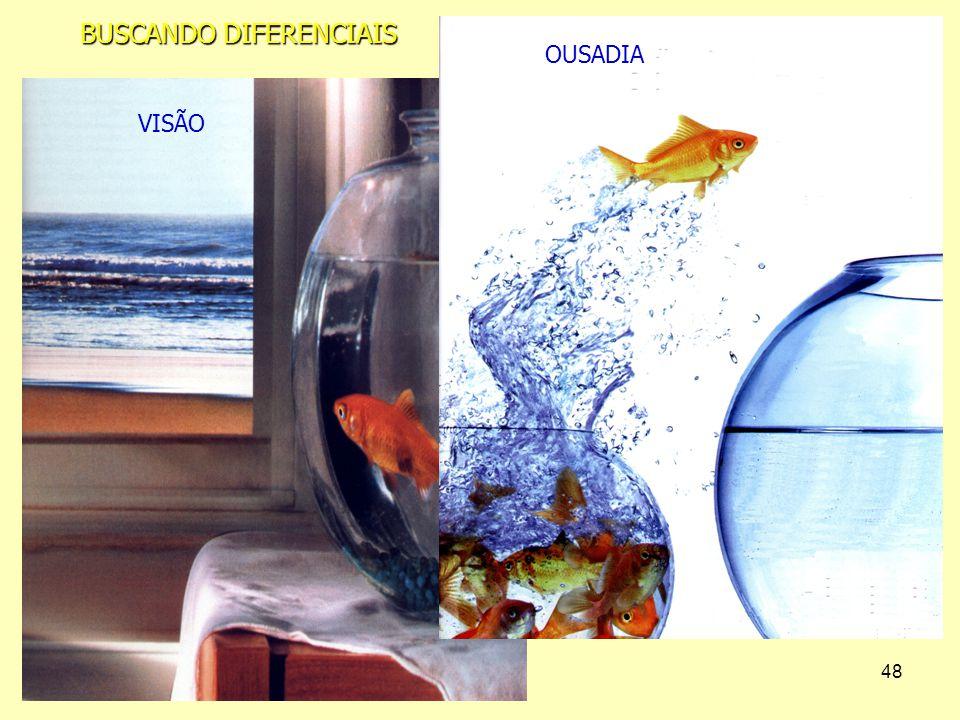 48 VISÃO OUSADIA BUSCANDO DIFERENCIAIS