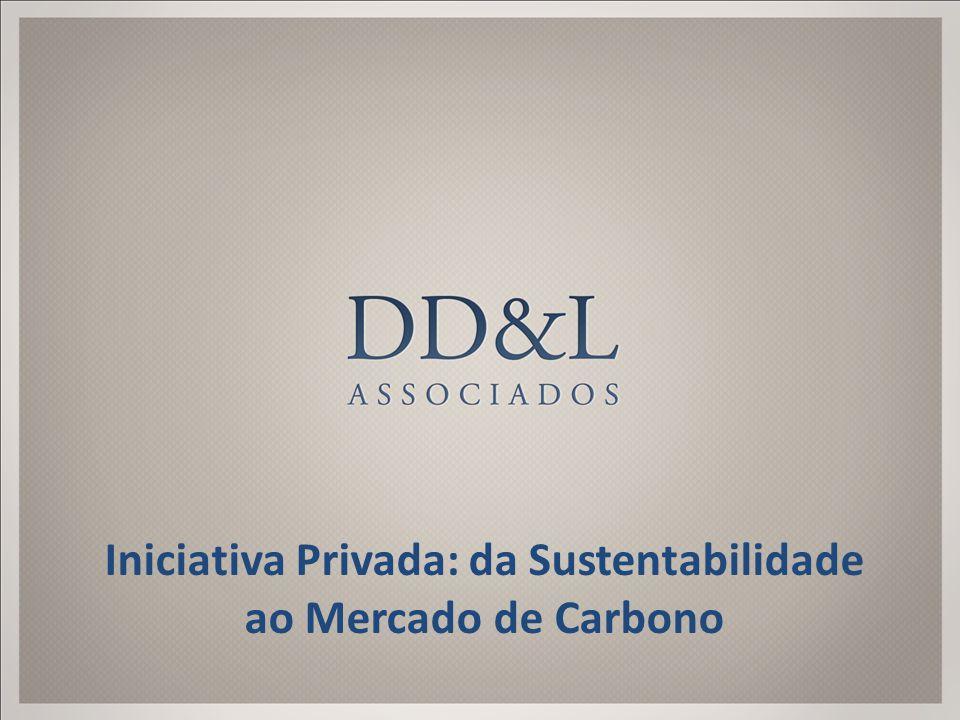 Iniciativa Privada: da Sustentabilidade ao Mercado de Carbono
