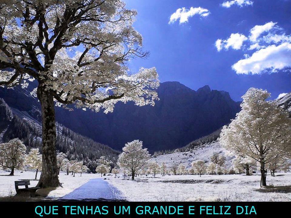 Assim, esperemos o dia de amanhã com Alegria e vivamos o de hoje em Plenitude