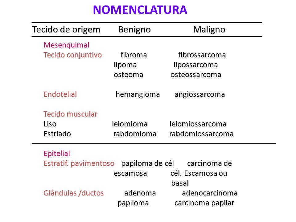 NOMENCLATURA Tecido de origem Benigno Maligno Mesenquimal Tecido conjuntivo fibroma fibrossarcoma lipoma lipossarcoma lipoma lipossarcoma osteoma osteossarcoma osteoma osteossarcoma Endotelial hemangioma angiossarcoma Tecido muscular Liso leiomioma leiomiossarcoma Estriado rabdomioma rabdomiossarcoma Epitelial Estratif.