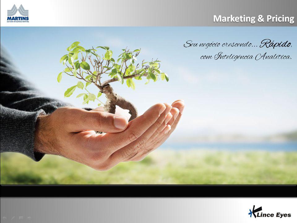Marketing & Pricing Seu negócio crescendo... Rápido, com Inteligência Analítica.