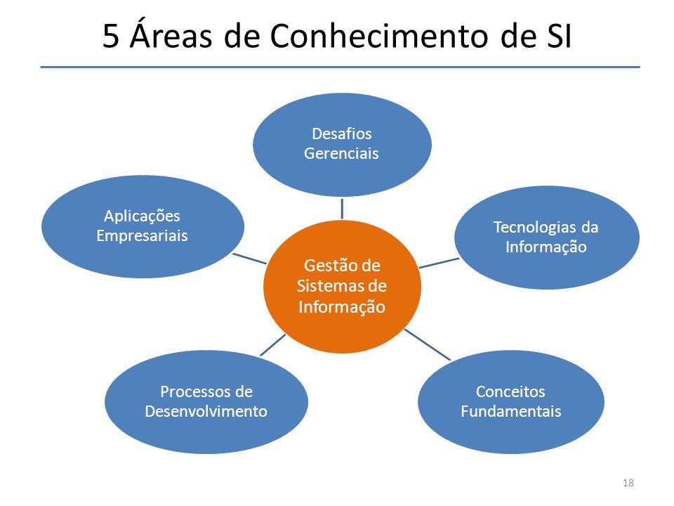 5 Áreas de Conhecimento de SI Gestão de Sistemas de Informação Desafios Gerenciais Tecnologias da Informação Conceitos Fundamentais Processos de Desenvolvimento Aplicações Empresariais 18