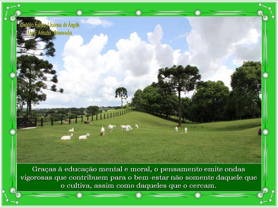 De acordo com o teor vibratório do pensamento - bom, regular, mau ou infeliz - pode-se aferir o nível moral do indivíduo.