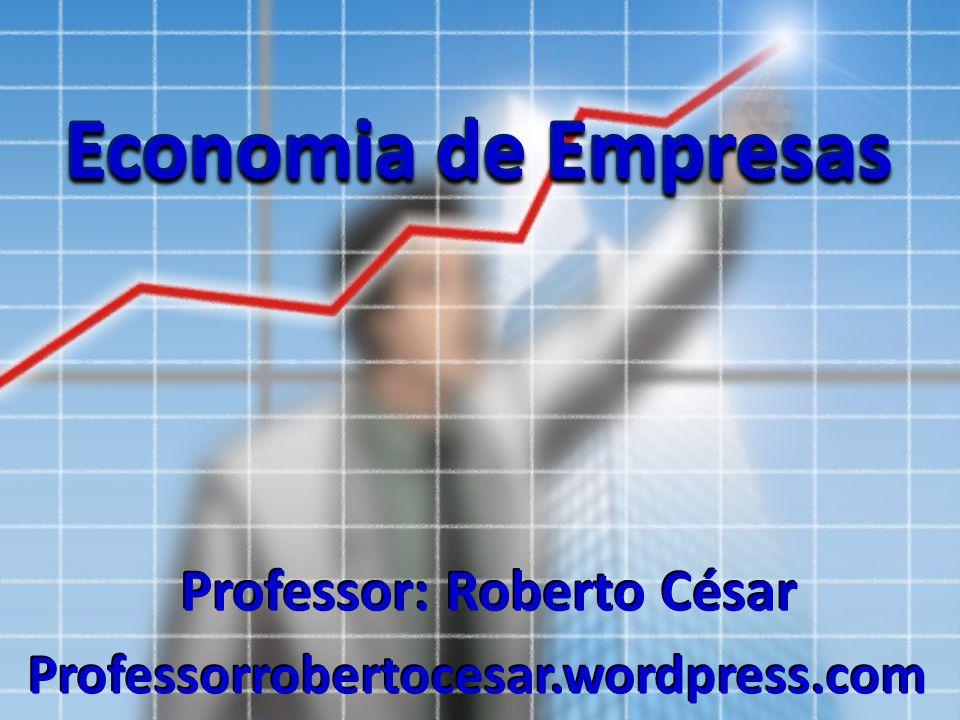 Economia de Empresas Professor: Roberto César Professorrobertocesar.wordpress.com