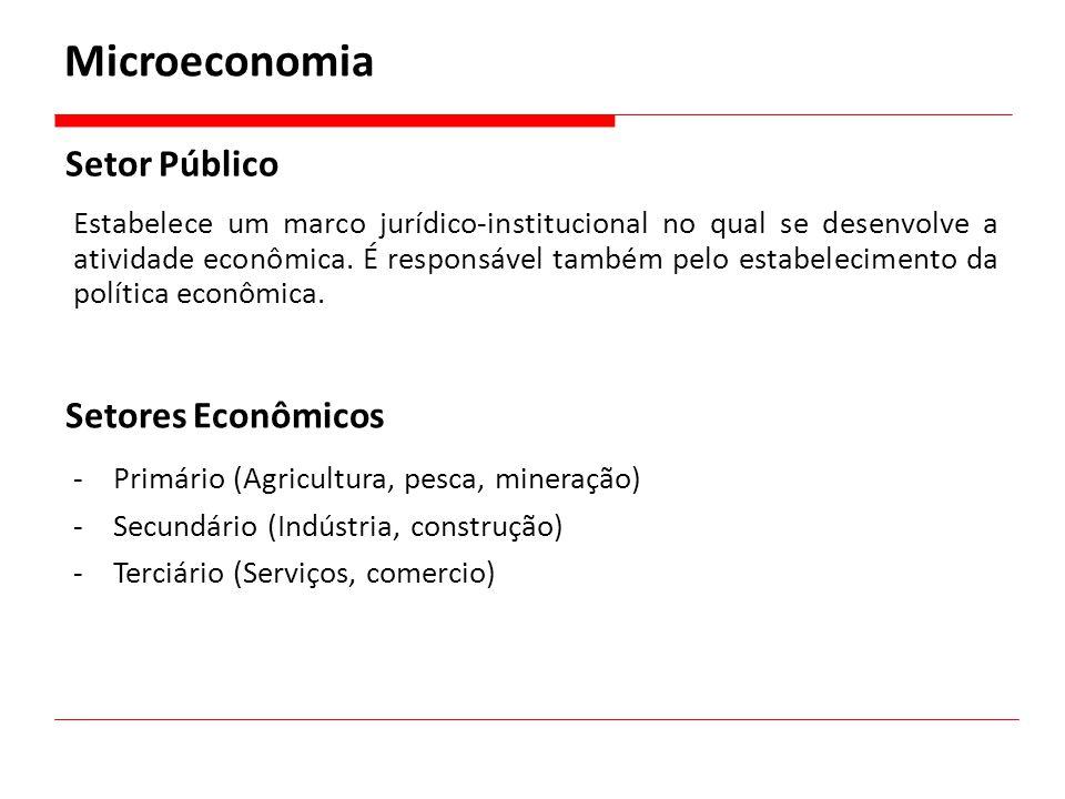 Setor Público Estabelece um marco jurídico-institucional no qual se desenvolve a atividade econômica. É responsável também pelo estabelecimento da pol