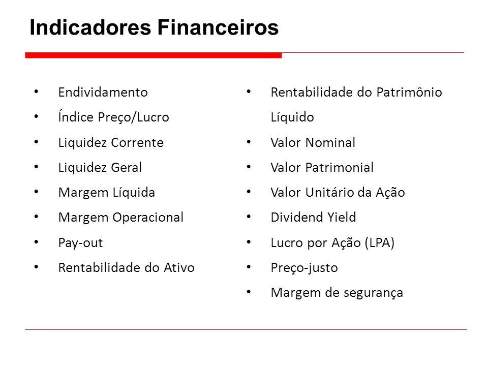 Indicadores Financeiros • Endividamento • Índice Preço/Lucro • Liquidez Corrente • Liquidez Geral • Margem Líquida • Margem Operacional • Pay-out • Re