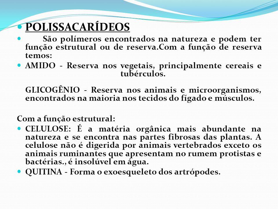  POLISSACARÍDEOS  São polímeros encontrados na natureza e podem ter função estrutural ou de reserva.Com a função de reserva temos:  AMIDO - Reserva
