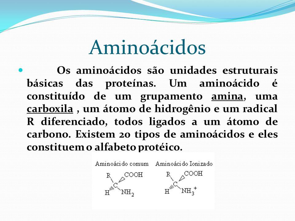 Aminoácidos  Os aminoácidos são unidades estruturais básicas das proteínas. Um aminoácido é constituído de um grupamento amina, uma carboxila, um áto