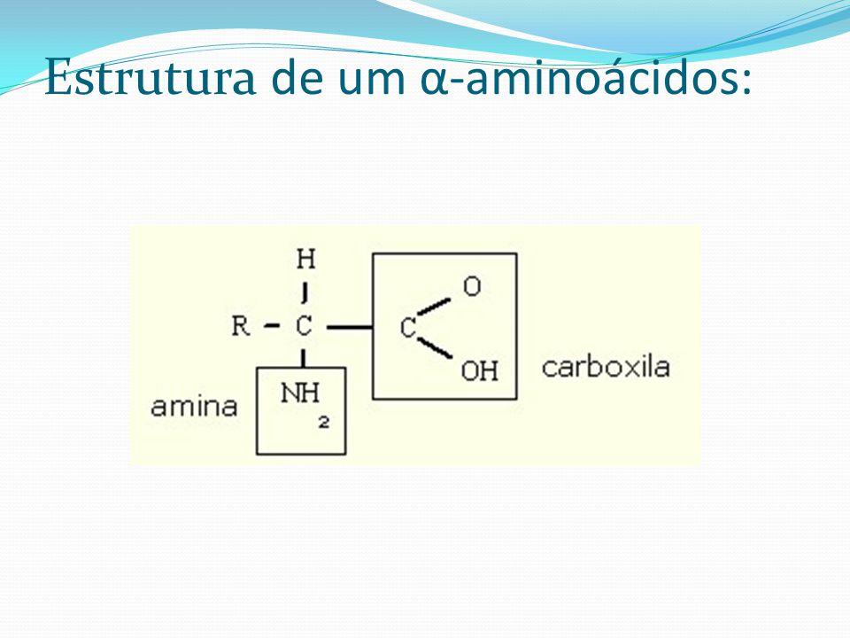 Estrutura de um α-aminoácidos: