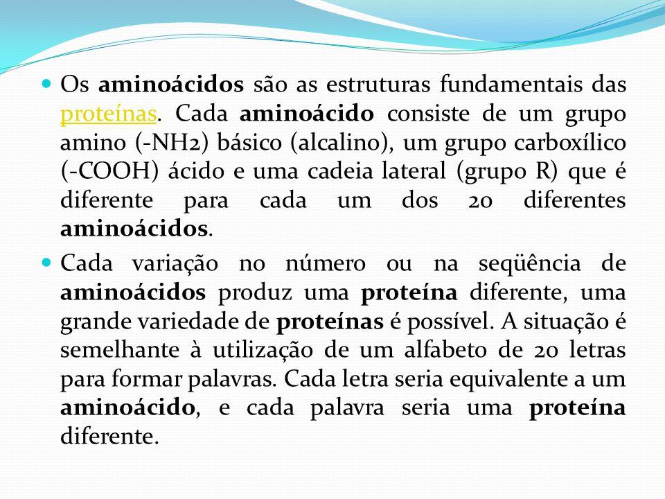  Os aminoácidos são as estruturas fundamentais das proteínas. Cada aminoácido consiste de um grupo amino (-NH2) básico (alcalino), um grupo carboxíli