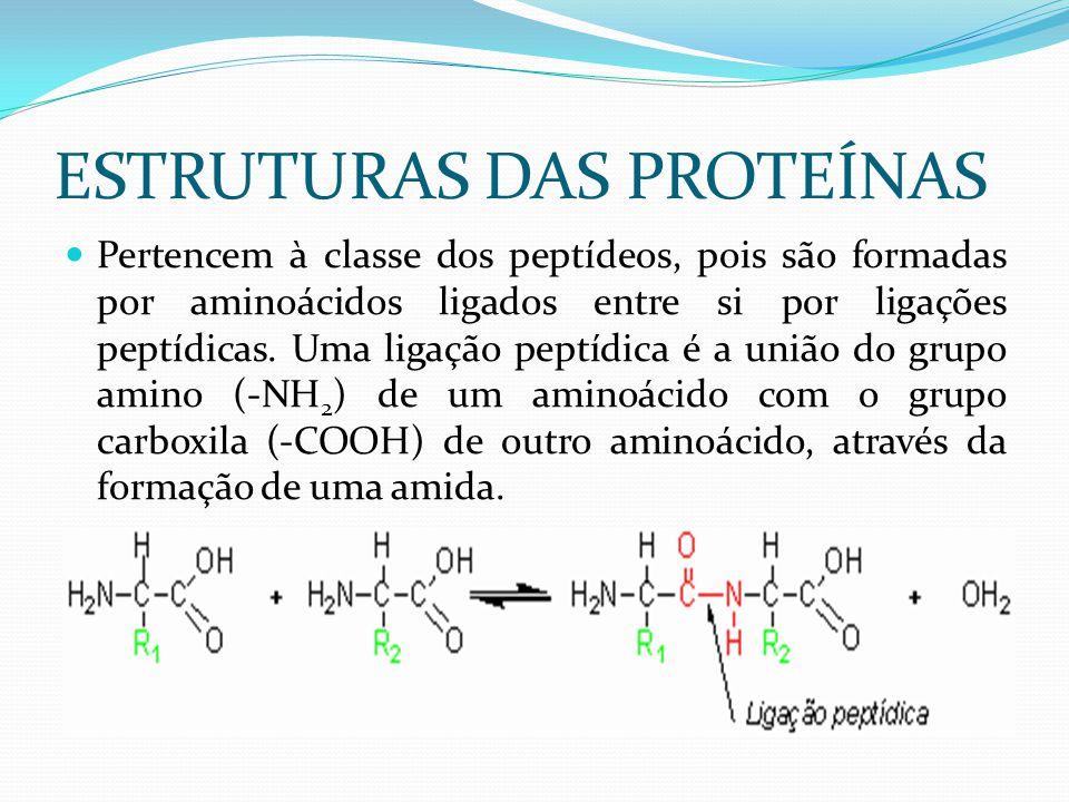 ESTRUTURAS DAS PROTEÍNAS  Pertencem à classe dos peptídeos, pois são formadas por aminoácidos ligados entre si por ligações peptídicas. Uma ligação p