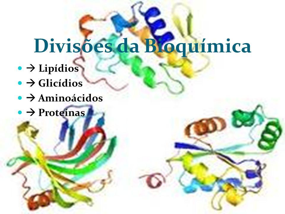 Caráter anfótero dos aminoácidos  Os aminoácidos possuem caráter anfótero, ou seja, quando em solução podem funcionar como ácidos ou como bases.