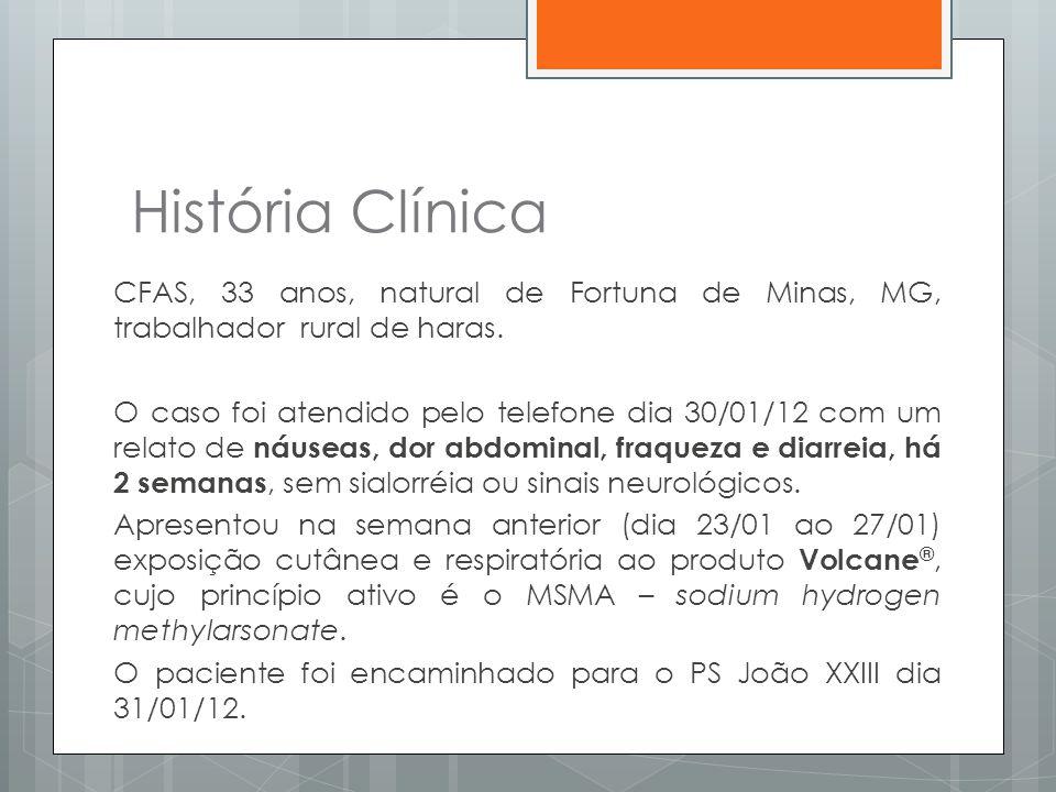 História Clínica CFAS, 33 anos, natural de Fortuna de Minas, MG, trabalhador rural de haras. O caso foi atendido pelo telefone dia 30/01/12 com um rel