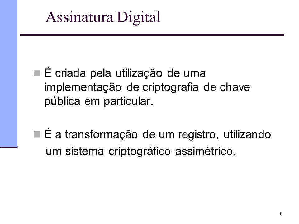 Assinatura Digital  É criada pela utilização de uma implementação de criptografia de chave pública em particular.  É a transformação de um registro,