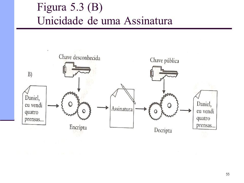 55 Figura 5.3 (B) Unicidade de uma Assinatura