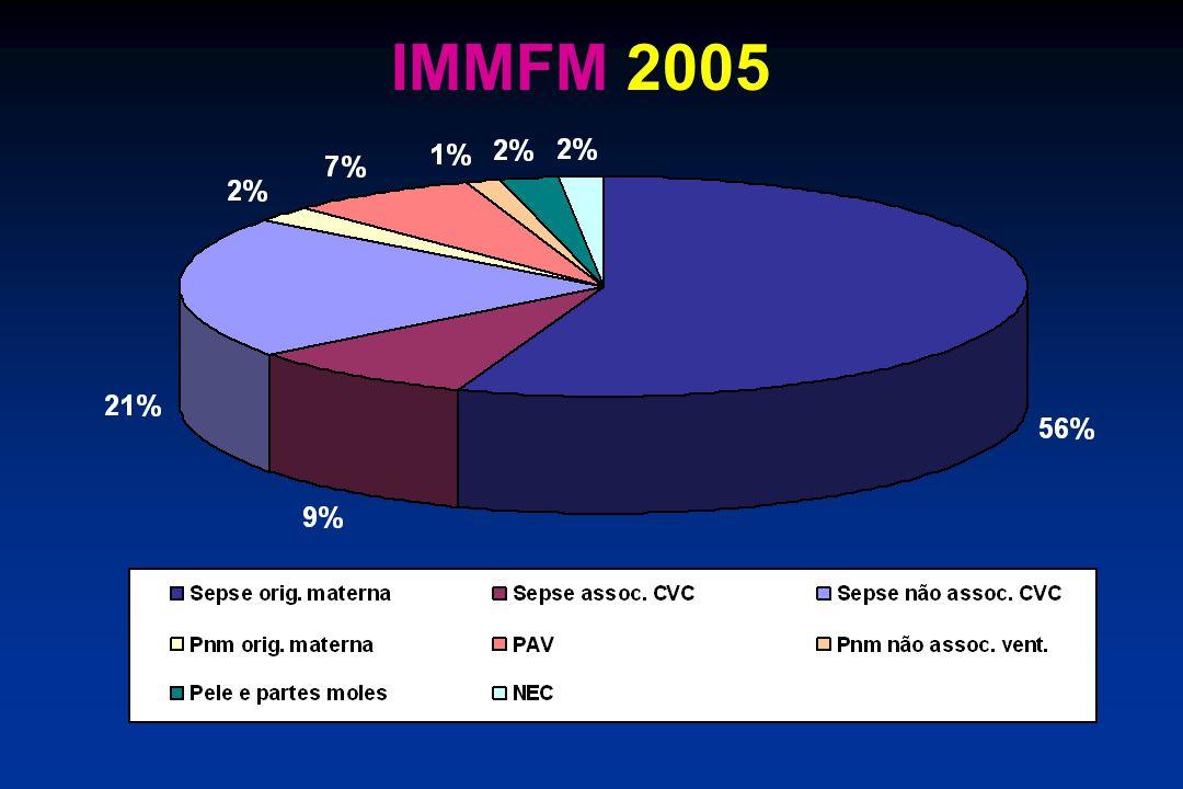 IMMFM 2005