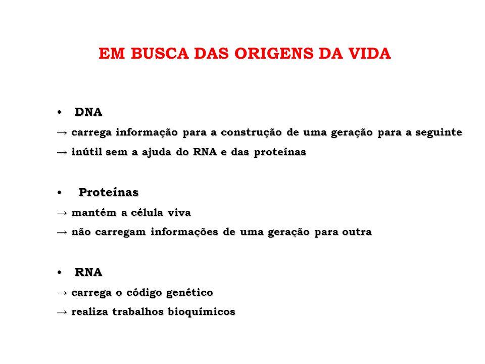 • DNA → carrega informação para a construção de uma geração para a seguinte → inútil sem a ajuda do RNA e das proteínas • Proteínas → mantém a célula
