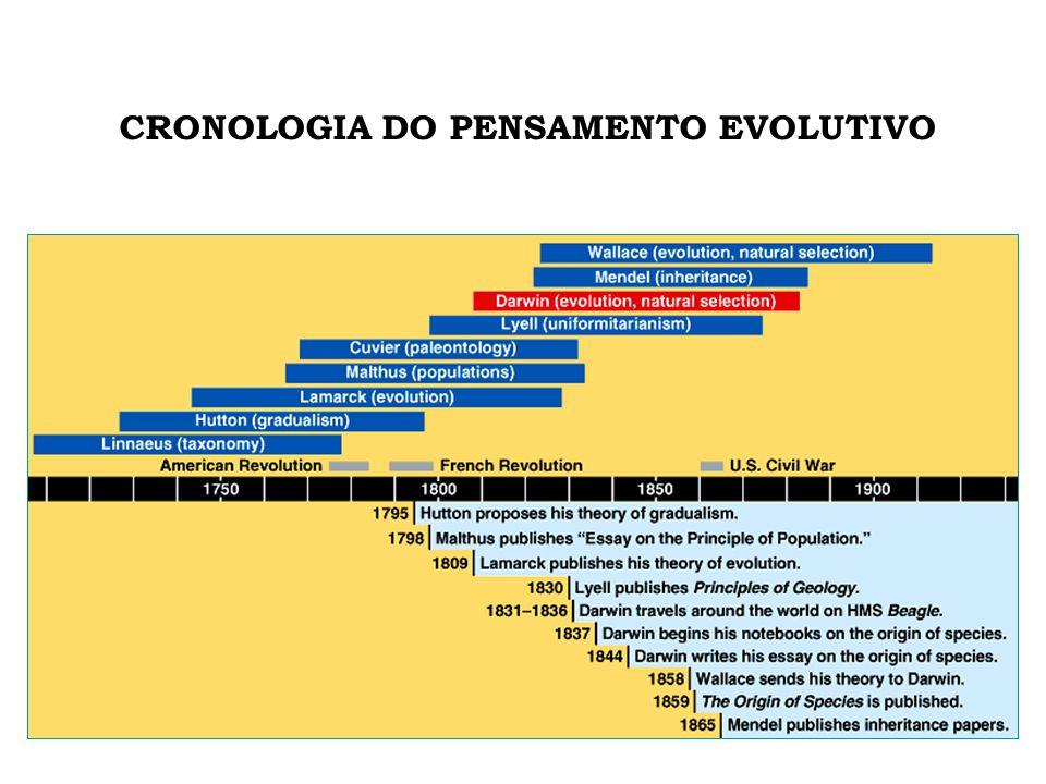 FASES DA HISTÓRIA DA HUMANIDADE • Pré-História 0 – 3300 a.C.