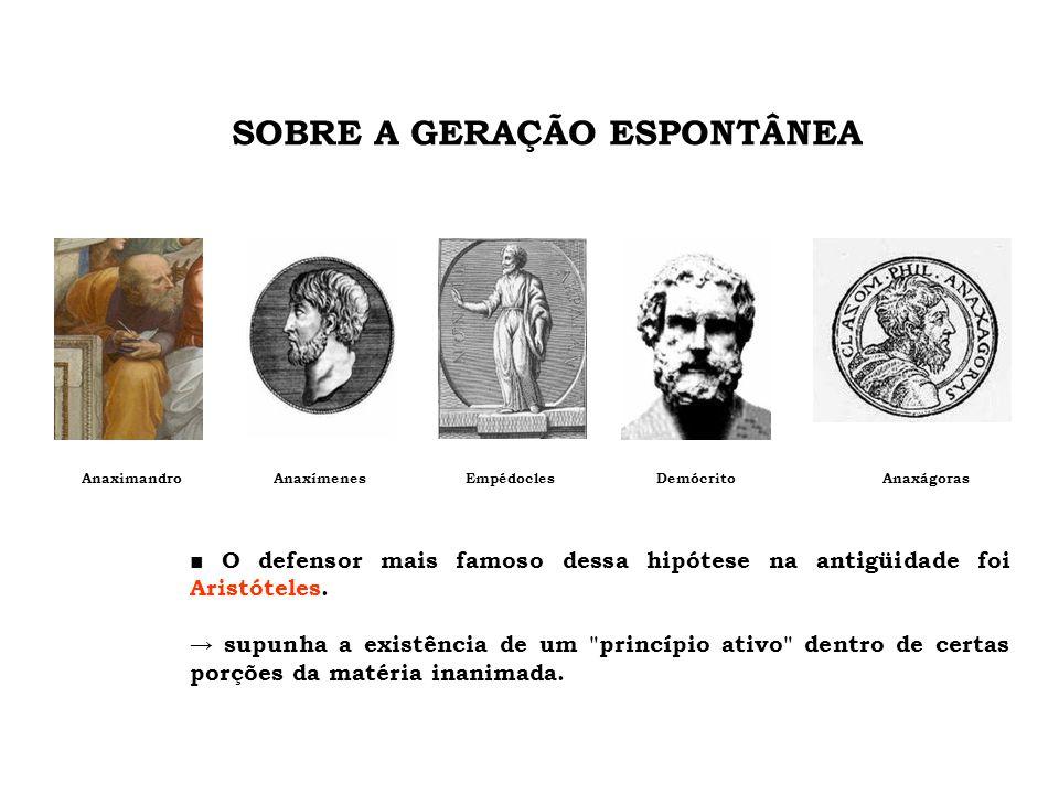 ■ O defensor mais famoso dessa hipótese na antigüidade foi Aristóteles. → supunha a existência de um