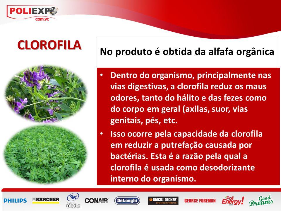 No produto é obtida da alfafa orgânica CLOROFILA • Dentro do organismo, principalmente nas vias digestivas, a clorofila reduz os maus odores, tanto do