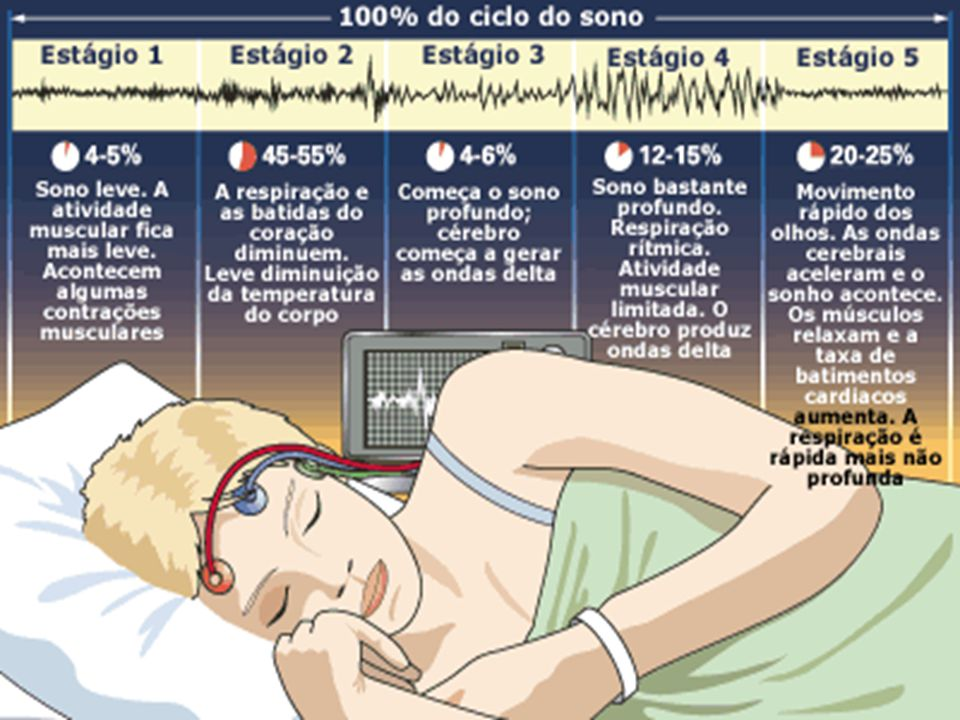 Isso significa que o momento do sono é exatamente aquele em que o corpo se restaura!