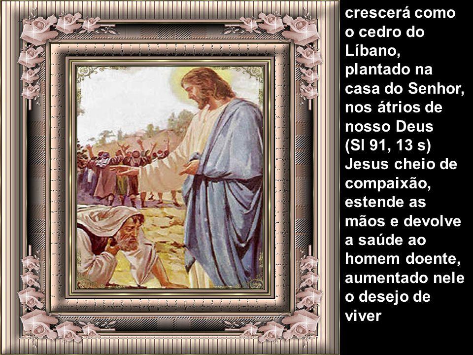 Irmãos, prosseguindo ocapitulo 1º do evangelista São Marcos Jesus continua com as curas e também com a libertação do povo colocando-o de volta a socie