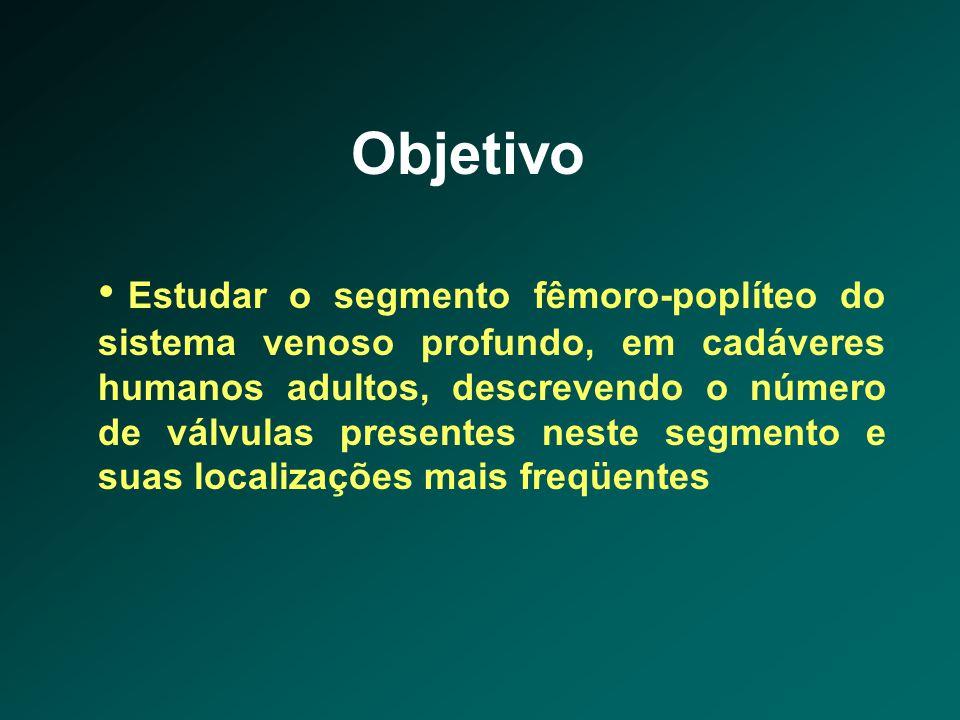 Objetivo • Estudar o segmento fêmoro-poplíteo do sistema venoso profundo, em cadáveres humanos adultos, descrevendo o número de válvulas presentes nes