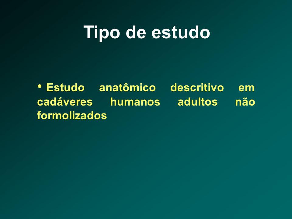 Tipo de estudo • Estudo anatômico descritivo em cadáveres humanos adultos não formolizados