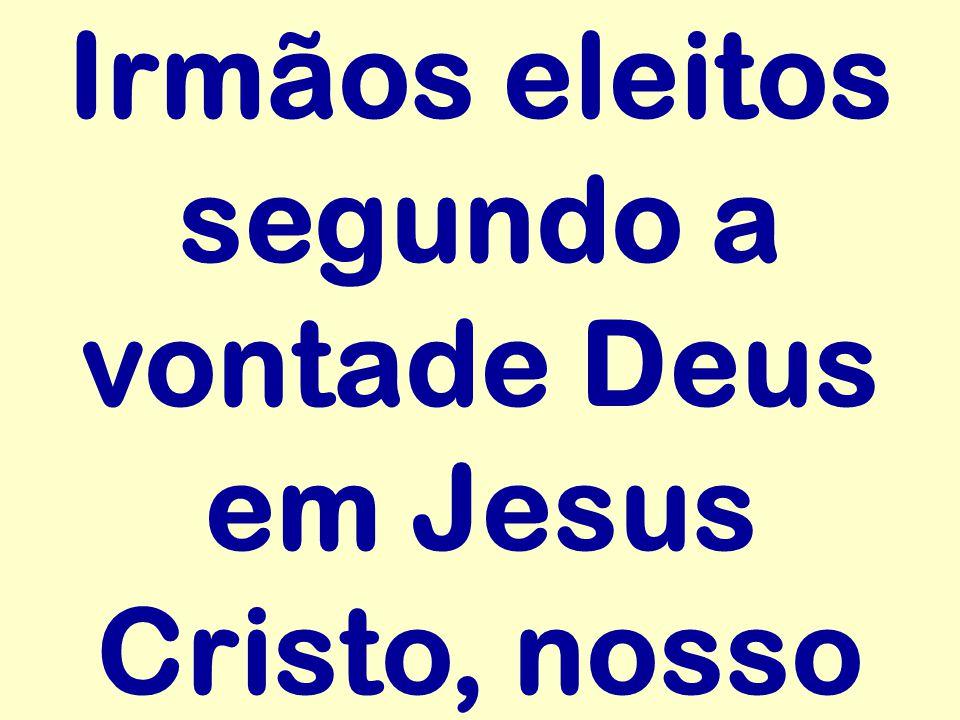 Irmãos eleitos segundo a vontade Deus em Jesus Cristo, nosso