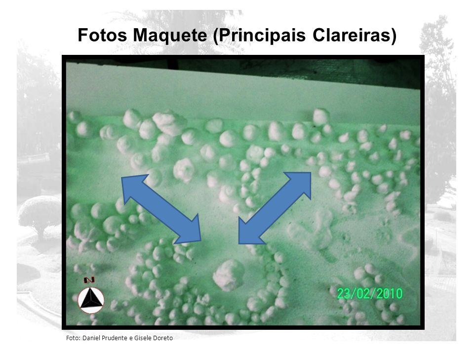 Fotos Maquete (Principais Clareiras) Foto: Daniel Prudente e Gisele Doreto