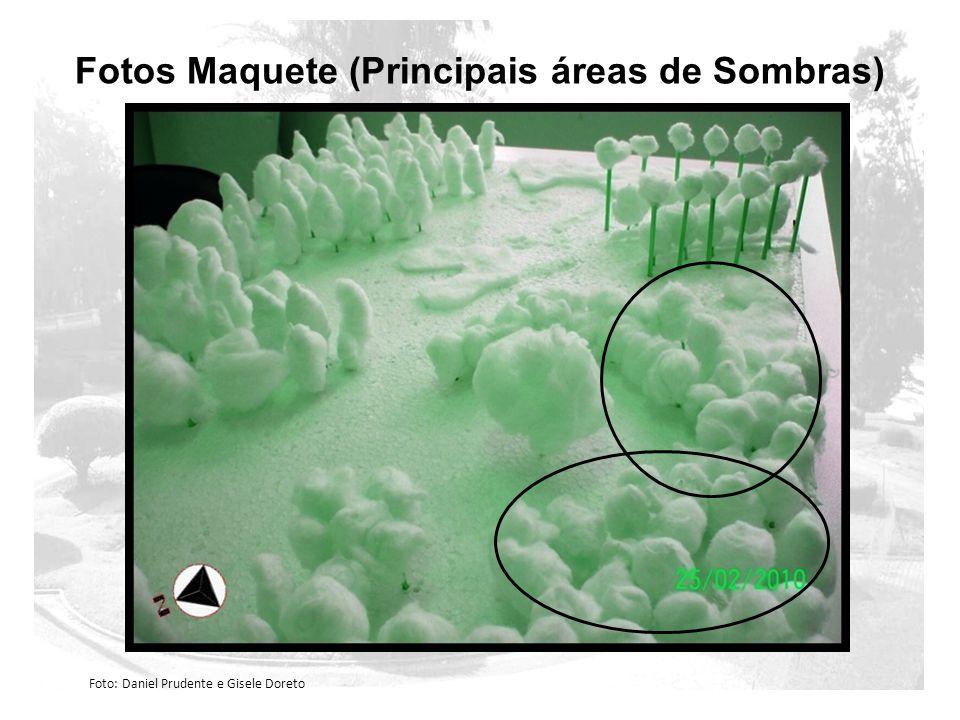 Fotos Maquete (Principais áreas de Sombras) Foto: Daniel Prudente e Gisele Doreto