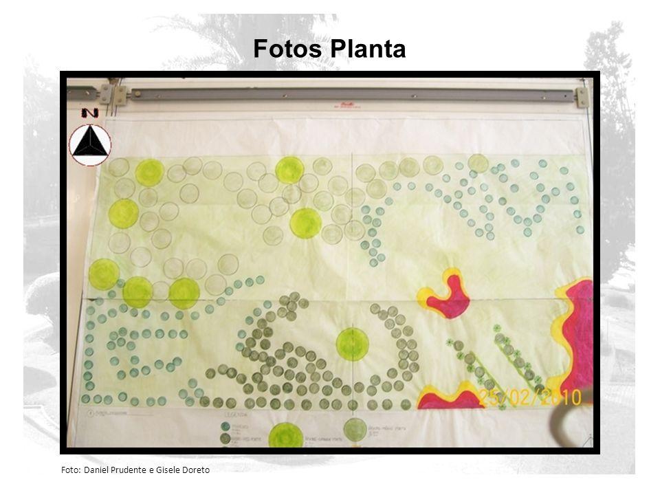 Fotos Planta Foto: Daniel Prudente e Gisele Doreto