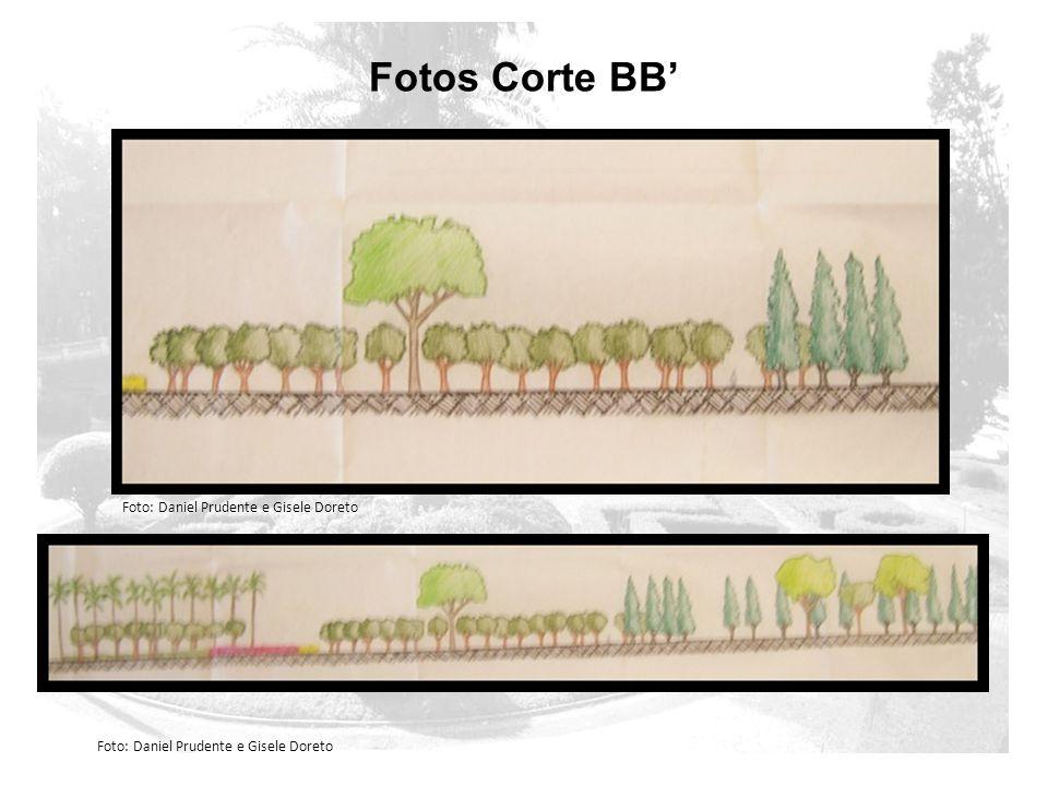 Fotos Corte BB' Foto: Daniel Prudente e Gisele Doreto