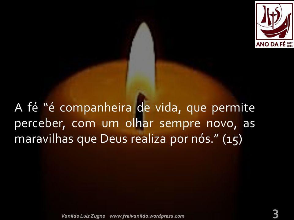 A fé é companheira de vida, que permite perceber, com um olhar sempre novo, as maravilhas que Deus realiza por nós. (15) 3 Vanildo Luiz Zugno www.freivanildo.wordpress.com
