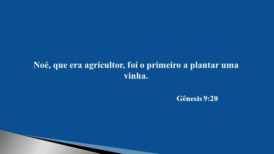Noé, que era agricultor, foi o primeiro a plantar uma vinha. Gênesis 9:20