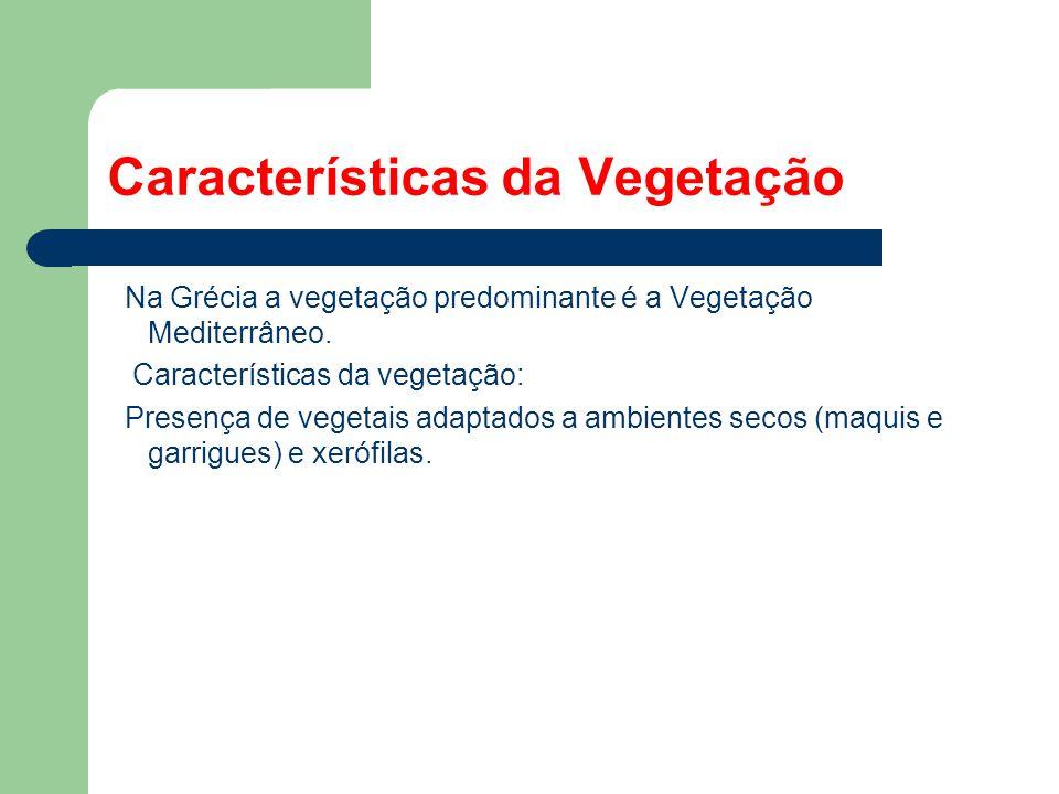 Características da Vegetação Na Grécia a vegetação predominante é a Vegetação Mediterrâneo. Características da vegetação: Presença de vegetais adaptad
