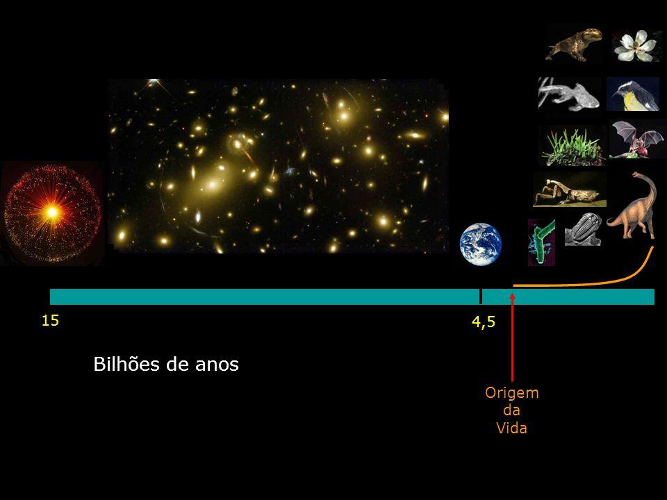 15 4,5 Bilhões de anos Origem da Vida