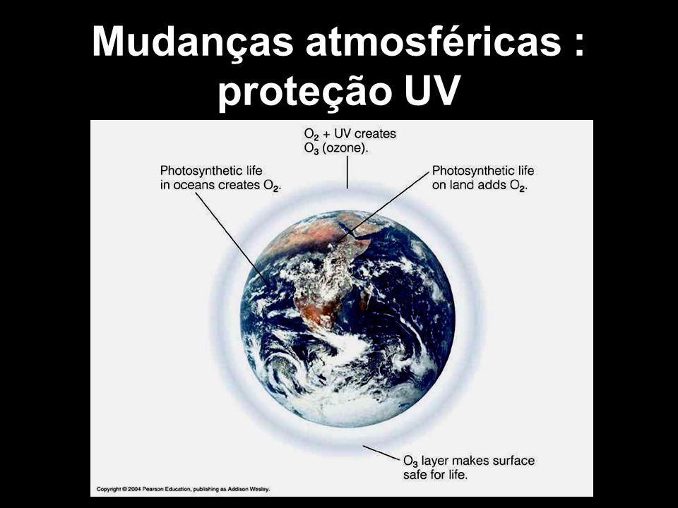 Mudanças atmosféricas : proteção UV