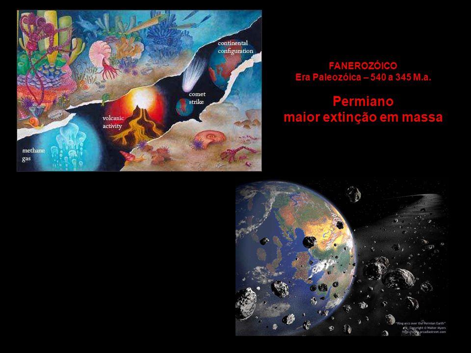 FANEROZÓICO Era Paleozóica – 540 a 345 M.a. Permiano maior extinção em massa