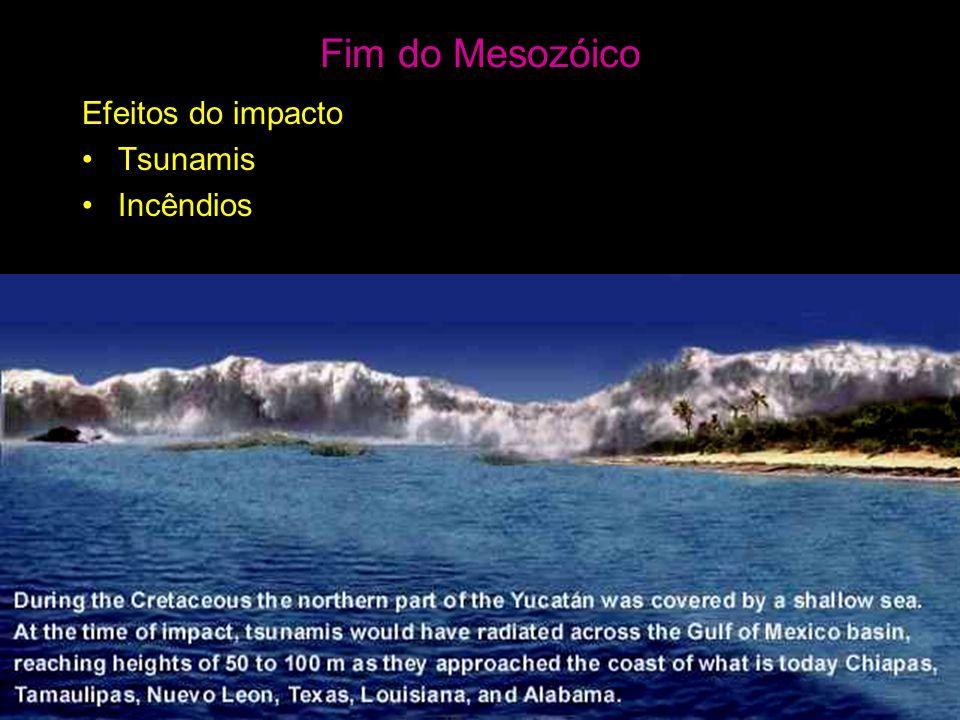 Efeitos do impacto •Tsunamis •Incêndios