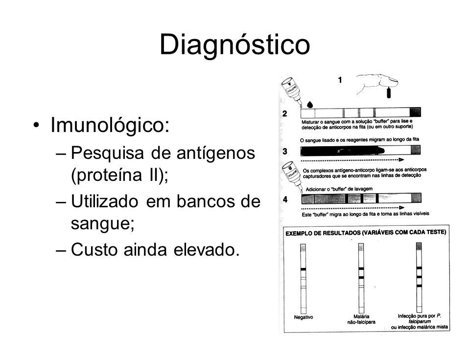 Diagnóstico •Imunológico: –Pesquisa de antígenos (proteína II); –Utilizado em bancos de sangue; –Custo ainda elevado.