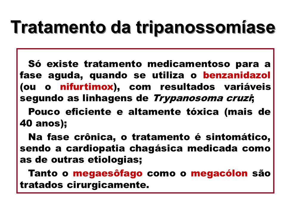 Tratamento da tripanossomíase Só existe tratamento medicamentoso para a fase aguda, quando se utiliza o benzanidazol (ou o nifurtimox), com resultados
