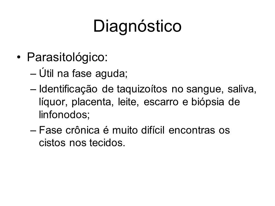 Diagnóstico •Parasitológico: –Útil na fase aguda; –Identificação de taquizoítos no sangue, saliva, líquor, placenta, leite, escarro e biópsia de linfo