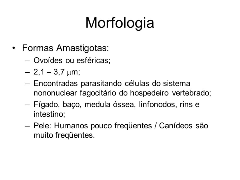 Morfologia •Formas Amastigotas: –Ovoídes ou esféricas; –2,1 – 3,7  m; –Encontradas parasitando células do sistema nononuclear fagocitário do hospedei
