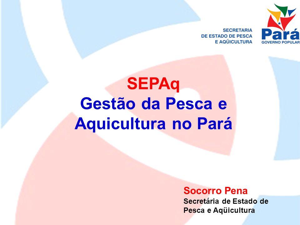 Infra-estrutura: REFORMA DAS ESTAÇÕES DE ALEVINAGEM SANTARÉM