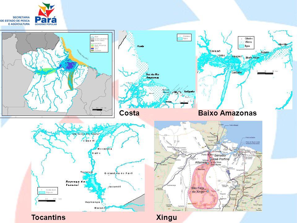 Pesca Industrial (peixes, lagostas, camarões) Pesca Artesanal Pesca de Subsistência Pesca Científica Pesca Ornamental Pesca Esportiva