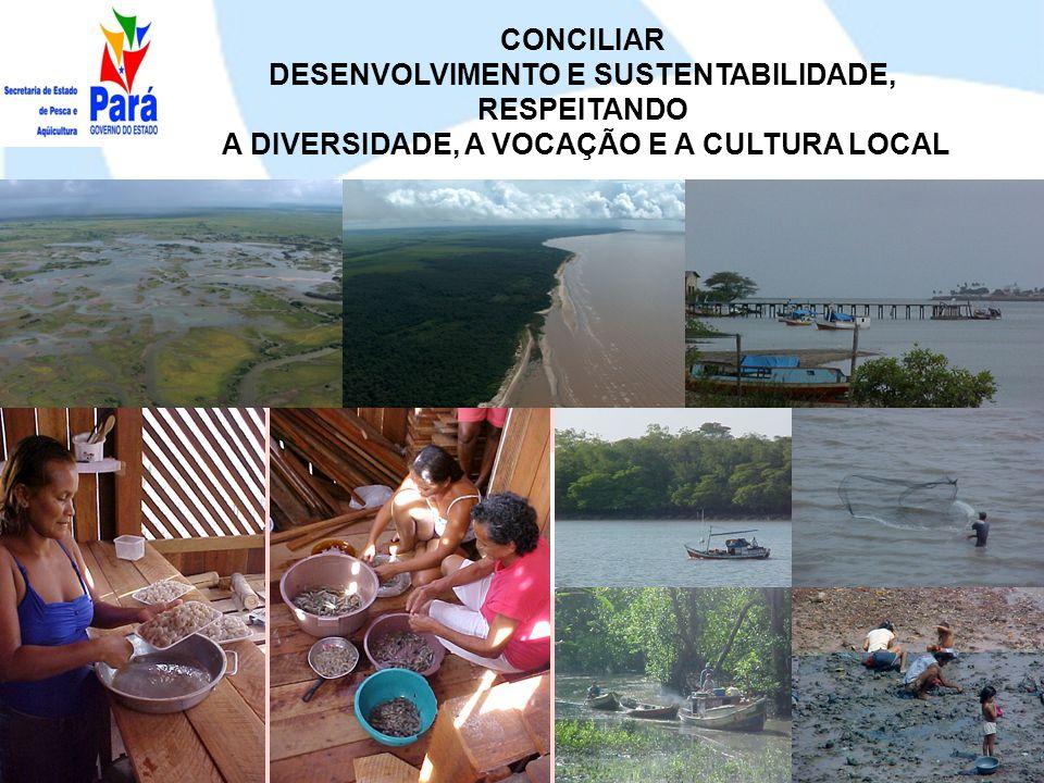 Medida Estruturante: IMPLEMENTAÇÃO DO SISTEMA ESTADUAL DE INFORMAÇÕES DA PESCA E AQÜICULTURA – SEIPAq.