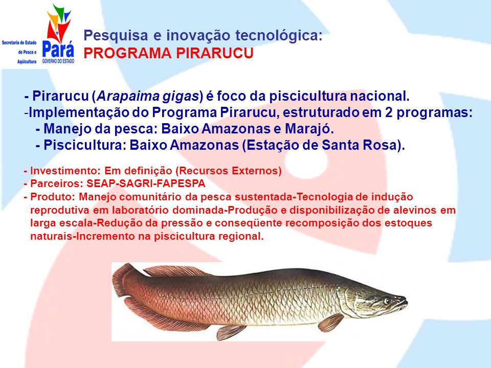Pesquisa e inovação tecnológica - REPAPAq - Projetos 1.